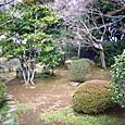 好文亭の庭園