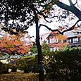 012旧古河庭園