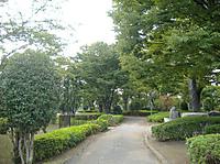 2010_1018_154