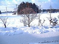 2011_0305_075633dscf0019