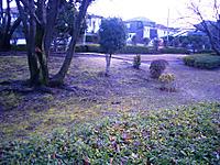 2012_0122_155656cimg2516