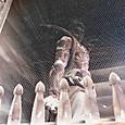山門右側の仁王像